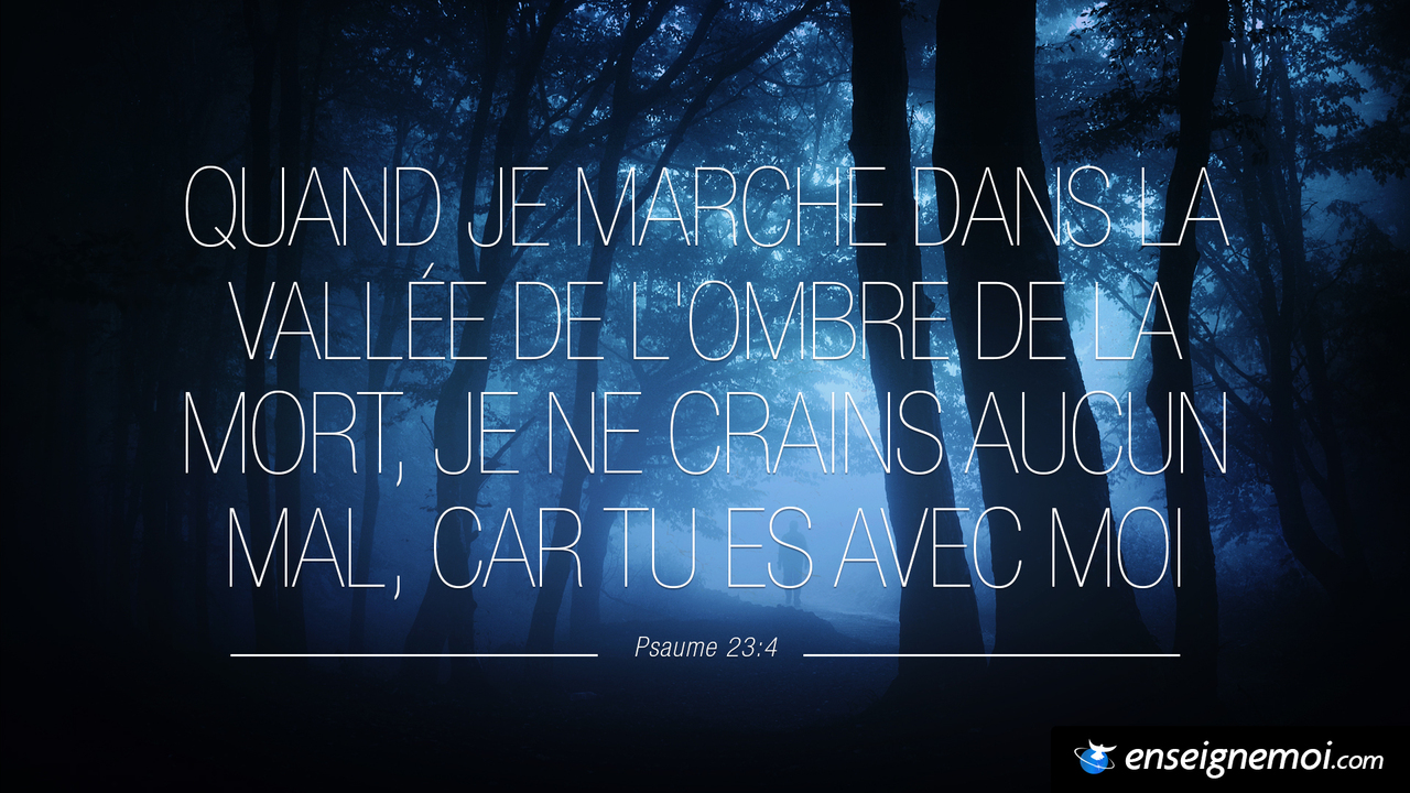 Psaumes 23:4