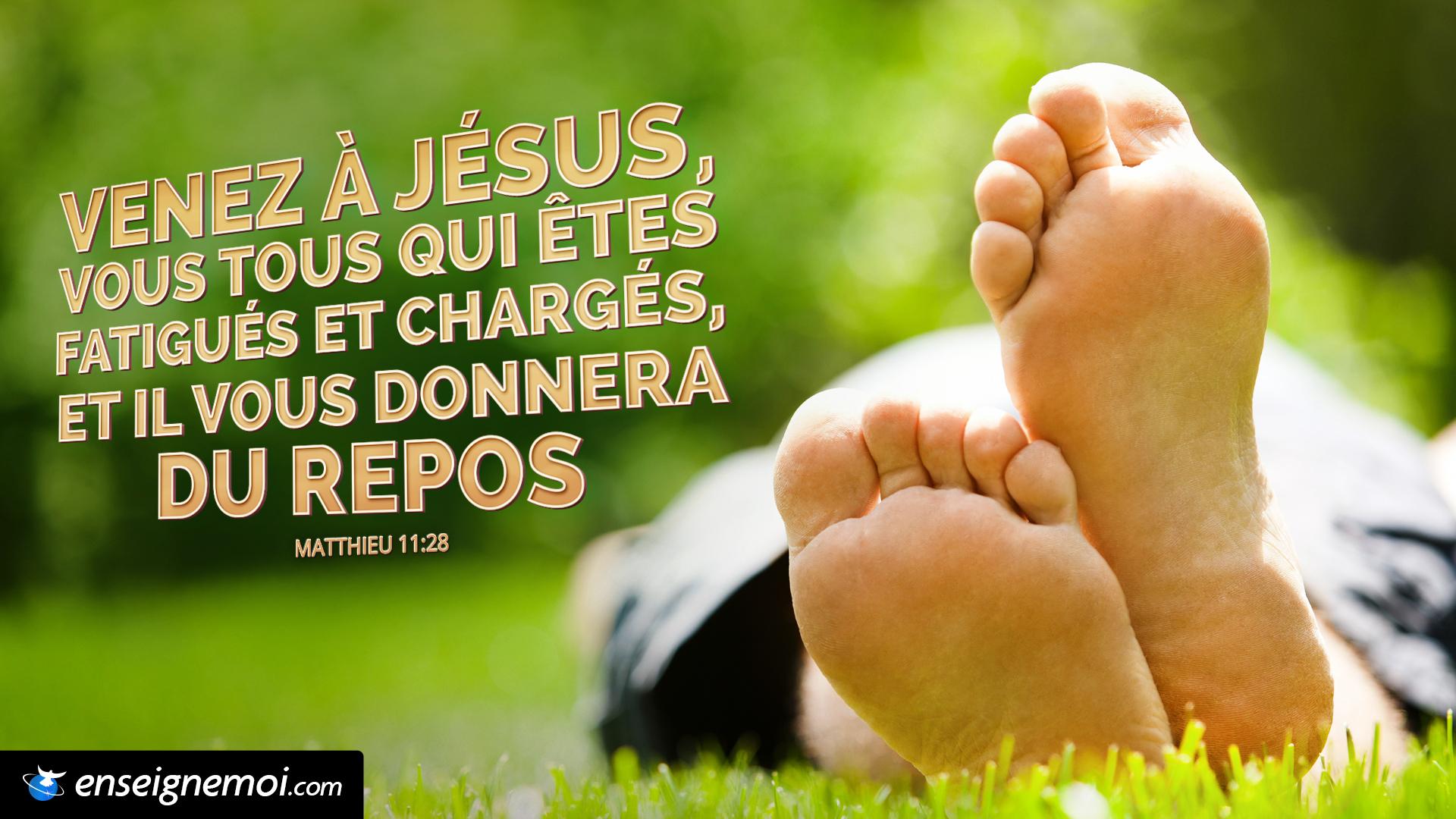 Bien-aimé Le verset du jour en image :: Bible :: EnseigneMoi SH26