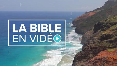 Visuel de l'émission La Bible en vidéo