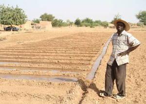 Combattre la faim par l'agriculture : un véritable espoir
