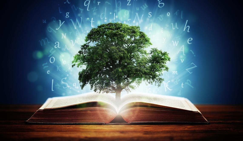 42 Versets Bibliques Sur La Sagesse Emci Tv