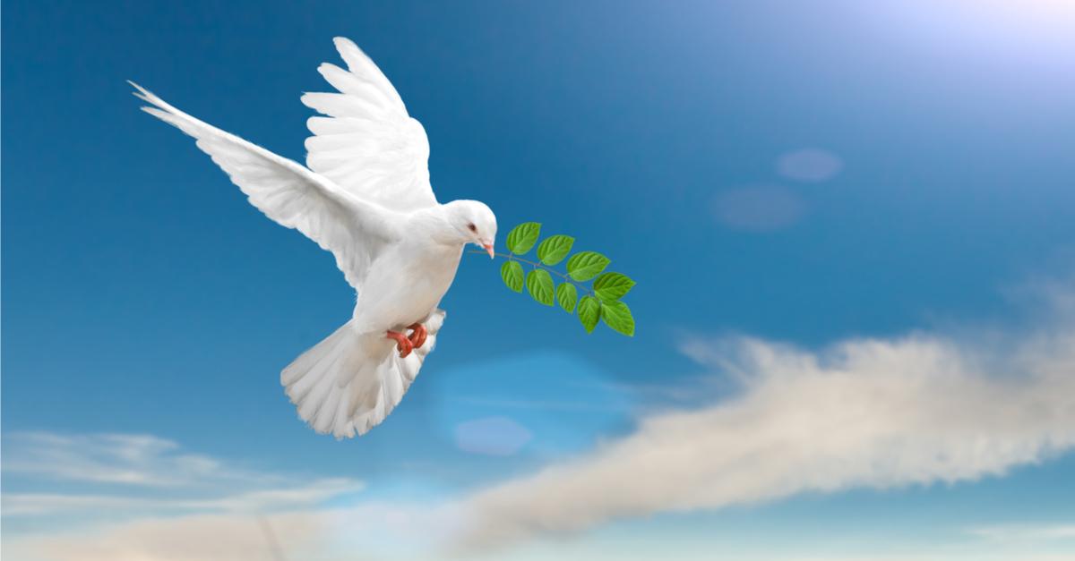 """Résultat de recherche d'images pour """"la paix"""""""